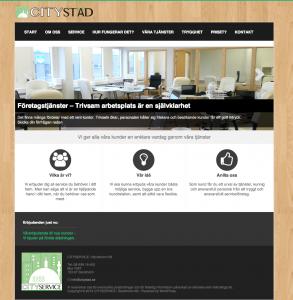 website_design4 webbproduktion - website_design4-293x300