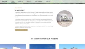 celine-group-hemsida webbproduktion - screenshot-www.celinegroup.com-2017-02-24-14-21-29-300x174