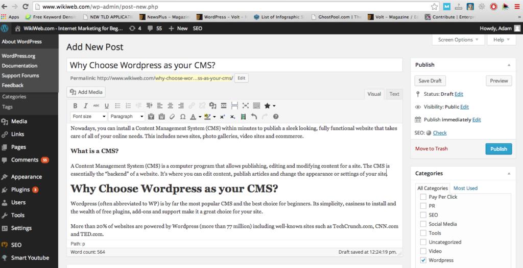 Wordpress-CMS-webbredaktör
